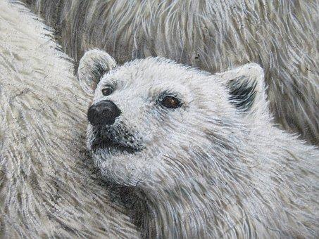 Polar Bear, Wall Art, Wall, Zoo, Berlin, Animal, Nature