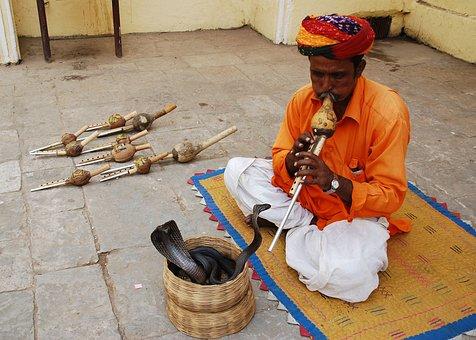 Snake Charmer Jaipur, Amer Fort Jaipur Tour, Travels