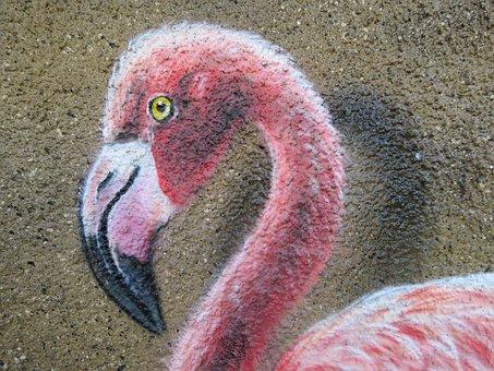 Flamingo, Wall Art, Wall, Zoo, Berlin, Animal, Nature
