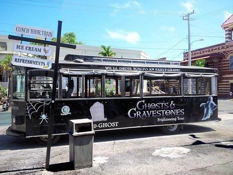 Bus, City, Vehicles, Public Transport, Town, Florida