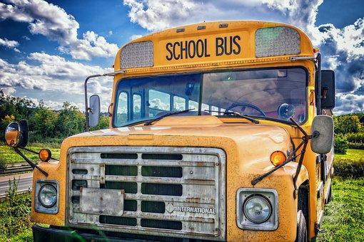 Bus, School Bus, Vehicle, America, Usa, Children