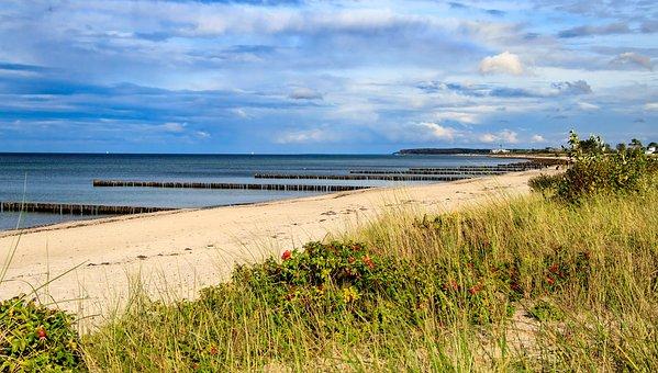 Baltic Sea, Coast, Sea, Beach, Water, Nature, Dune