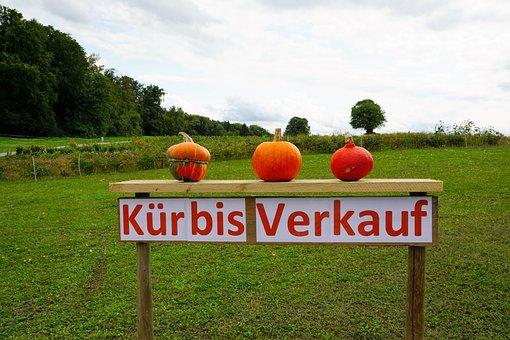 Pumpkin, Sale, Autumn, Summer, Eat, Soup, Cake, Food