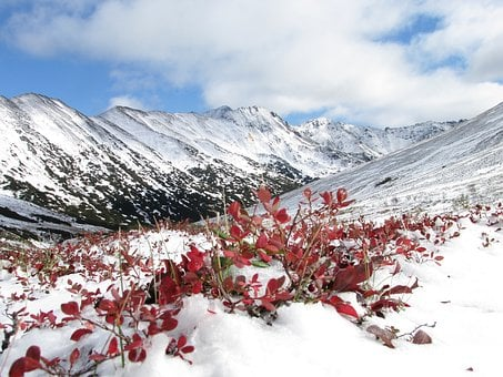 Mountains, Autumn, The First Snow, Fall Colors, Nature