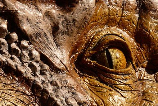 Dinosaur Eye, Eyeball, Reptile, Dragon, Gold