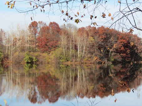 Autumn, Landscape, Lake, Forest, Reflections, Leaves
