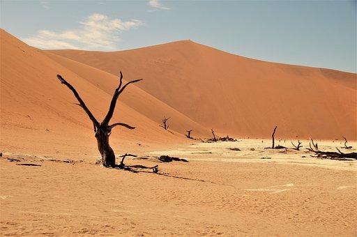 Namib Desert, Namibia, Desert, Dead Vlei, Africa