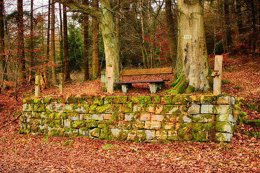 Bank, Wooden Bench, Sandstones, Moss, Roof, Green, Rest