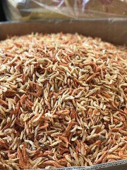 Dried Shrimps, Sun Dried, Asian Cuisine