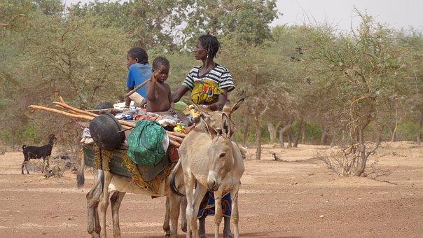 Transportation, Exodus, Family, Baggage, Overload