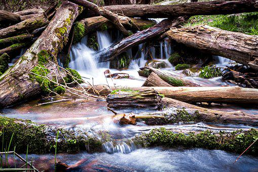 Long Exposure, Stream, Dam, Beaver Dam, River, Water