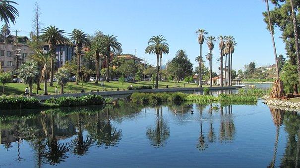 Echo Park, Los Angeles, Lake, Palms, Palm Trees