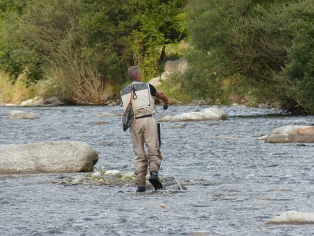 Fisherman, Sport, Fishing, Noguera Pallaresa River