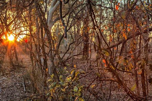 Sunrise Townsville, Townsville Mt Louisa