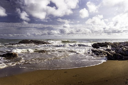 Saunders Beach, North Of Townsville, Dog Beach