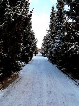 Road, Alley, Wood, Six, Helsinki, Finnish, Snow, Winter