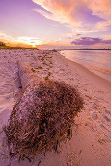 Beach, Gulf Coast, Florida, Sunset