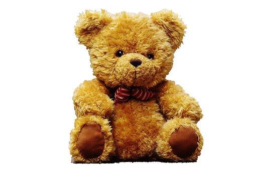 Teddy Bear, Teddy, Bear, Toy, Cute, Soft, Brown, Animal