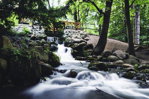 Brook, Park, Nature, Water, The Stones, Tree, Birch