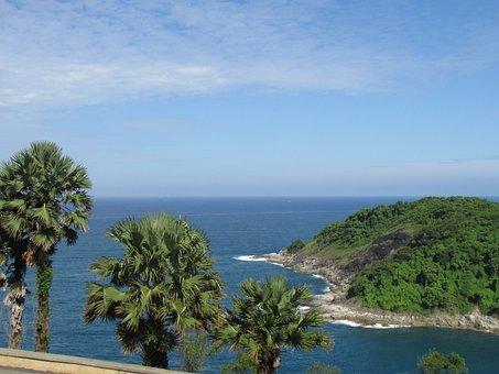 Beach, Tree, Palm Tree, Palm Trees, Palm, Tropical, Sea