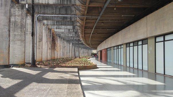 Oscar Niemeyer, Unb, University, Brasilia
