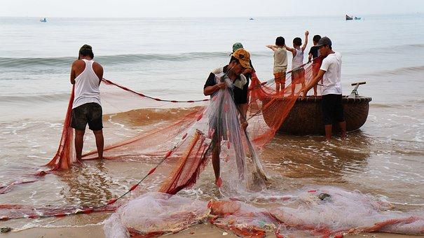 The Fishing Village, Drag-net, People, Life, Vietnam