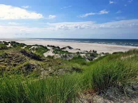 Dune Landscape, Borkum, Island, Nature, North Sea