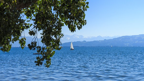 Lake Constance, Sail, On The Water, Bank, Constance