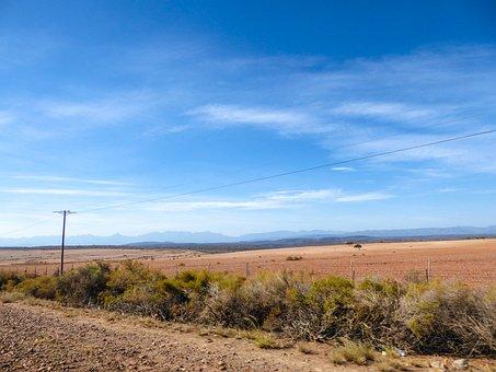 Steppe, Strommast, Road Trip, Desert, Semi-desert