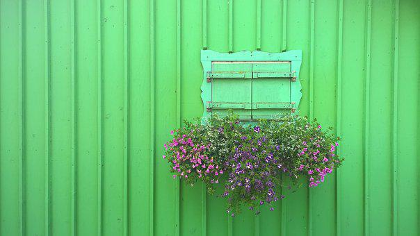 Starnberger See, Shutter, Green, Flowers, Closed
