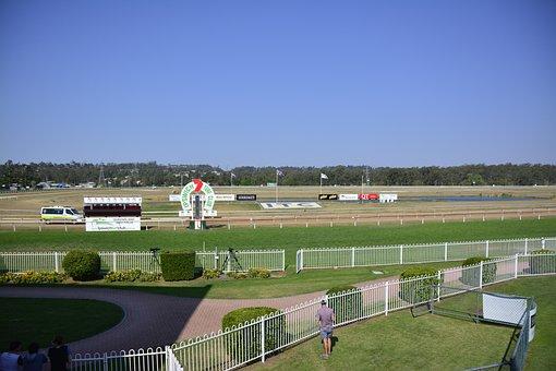 Horseracing, Turf, Horse, Racehorse, Animal, Outdoors
