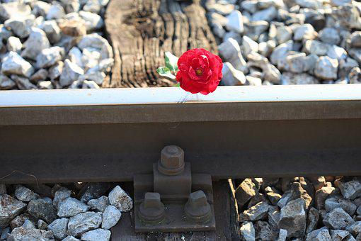 Red Rose On Railway Crossing, Accident, Drive Carefully