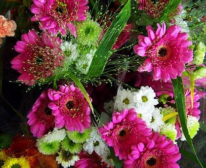 Gerbera Bouquet, Pinkish-white, Cut Flower
