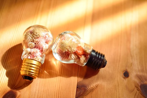 Glass, Bottle, Bulb, Dried Flowers, Colorful