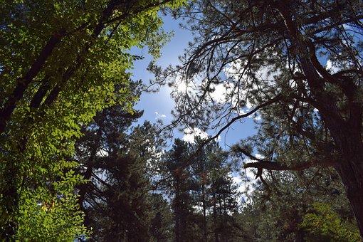 Nature, Sky, Sun, Blue, Day, Natural, Landscape