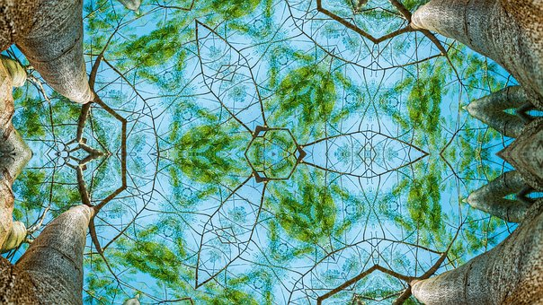 Forest, Kaleidoscope, Pattern, Ornament, Border