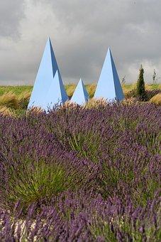 Lavender, York, Field, Sculpture