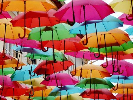 Umbrellas, Colorful, Shade Tree, Colorful Umbrella